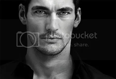 https://i2.wp.com/i64.photobucket.com/albums/h179/scribble14/gandy%20candy/DavidGandy.jpg
