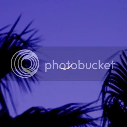moon photo: Moon 365428008_64fa56e6ba.jpg