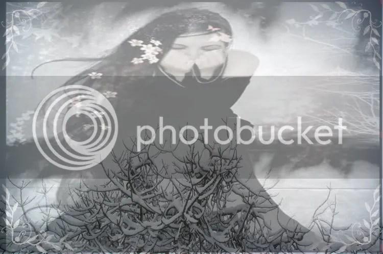 ramas-nevadas-750.jpg picture by leha67