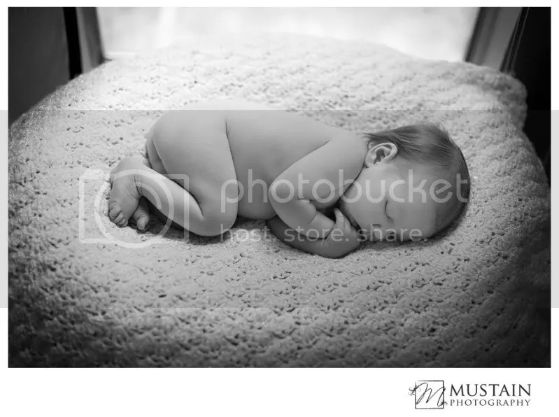 Rocklin Child Photographer,Roseville Child Photographer,Grass Valley Child Photographer,Nevada City Child Photographer,Sacramento Child Photographer