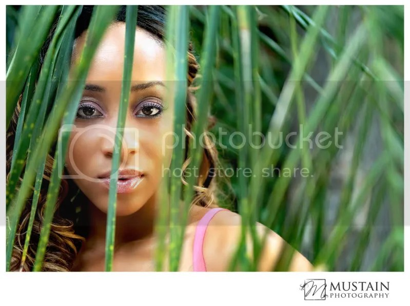 Mustain Photography