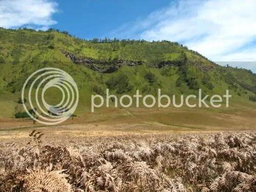 Mt Bromo East Java 2006 Wheelosopher