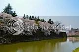 photo DSC_5616.jpg