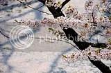 photo DSC_5629.jpg