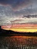 photo IMG_1435.jpg