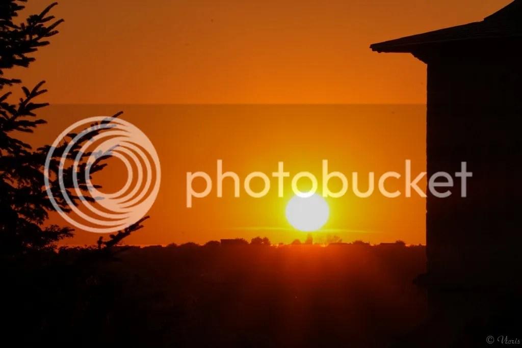 photo DSC08443.jpg