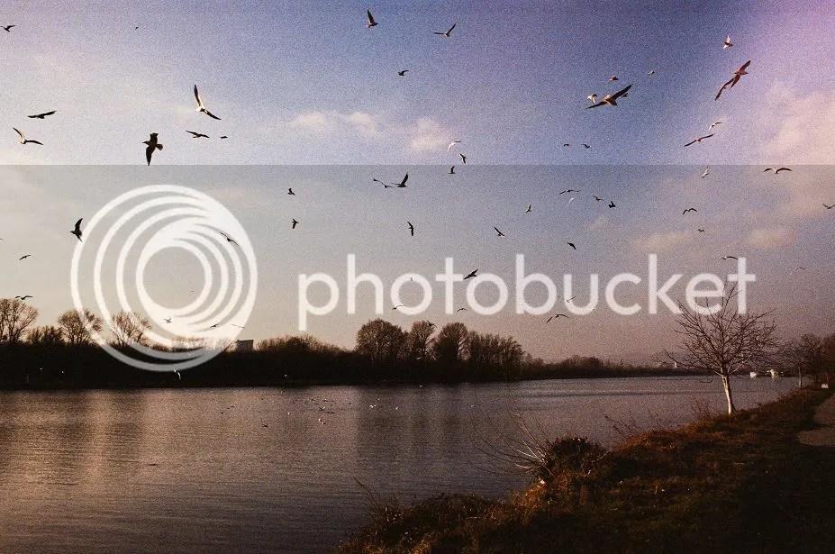 photo 04280006_zps991a212d.jpg