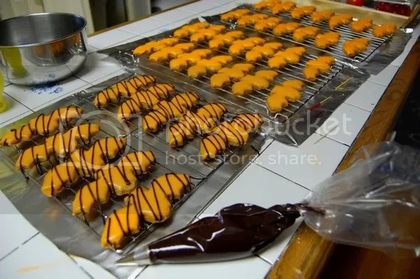 Pumpkin Spice Bat Cookies