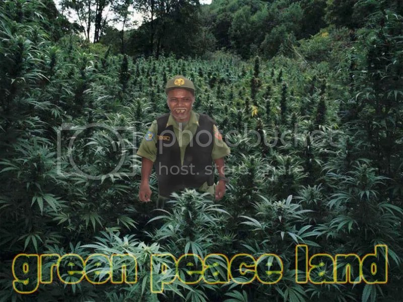 Green Peace Land