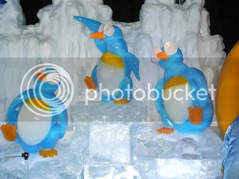 Penguins dancing...Happy Feet?