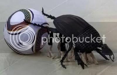 Jabulani beetle, World Cup 2010
