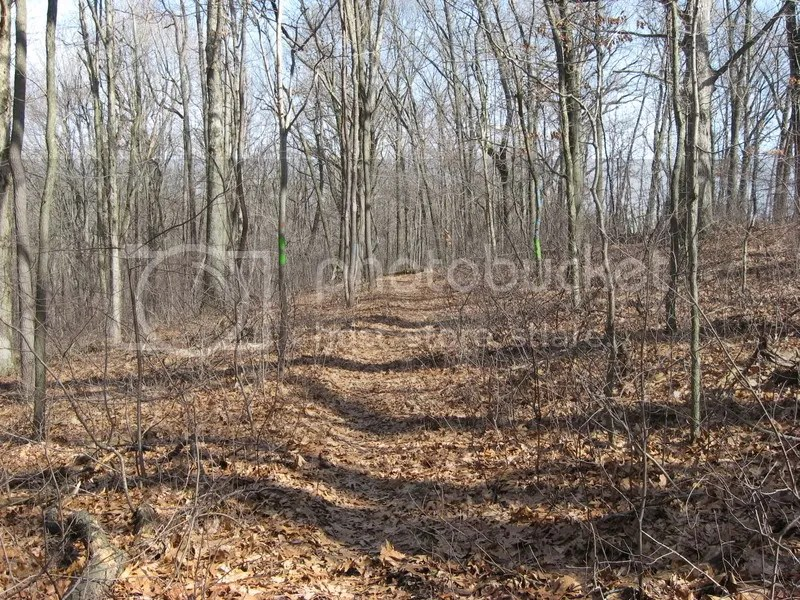 Im working on a theory that the obviousness of the trail is directly proportional to the number of blazes that will mark it.