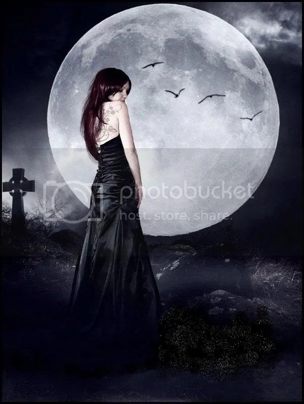Moon_Light_by_Senderosolvidados.jpg picture by middleblood
