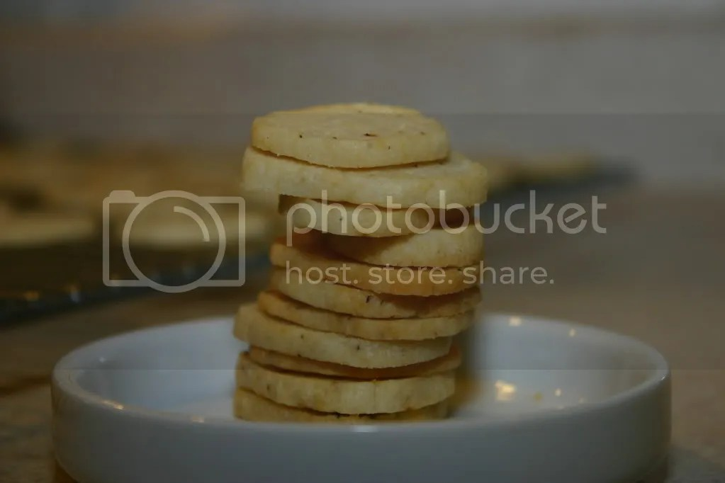 Lemon Crackers