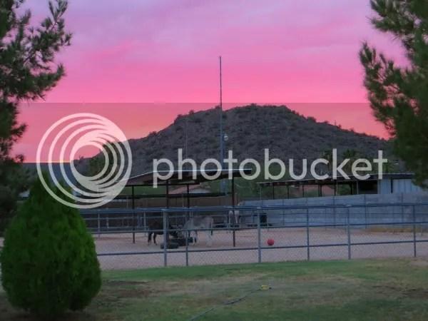 Attached TBN Sunset 8-22-13 photo c87a7b06-a442-4628-9dc2-694ca69f1688_zpse1e4cf7e.jpg