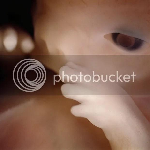 Foto Menakjubkan Perjalanan waktu janin dalam rahim ibu