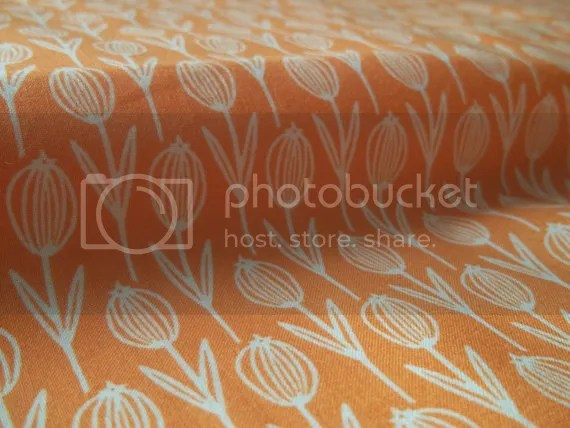photo orangeandwhiteflowers_zps5f8de101.jpg