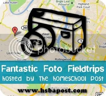 Homeschool Post : Fantastic Foto Field Trip Linkup Button