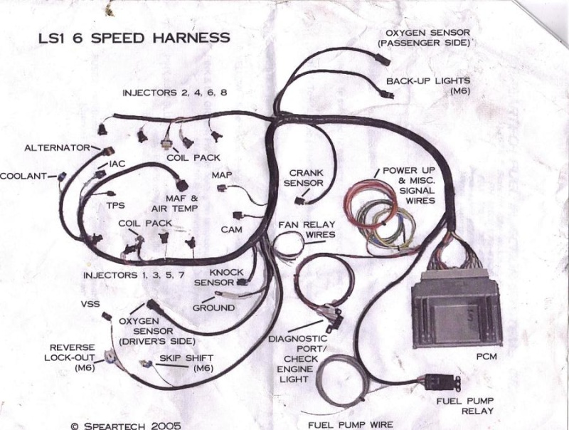 Ls1 Wiring Harness Diagram GM LS Engine Wiring Harness Free – Lt1 Wiring Harness Modification