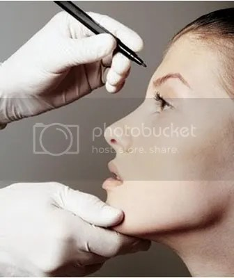facial plastic surgeon chicago il
