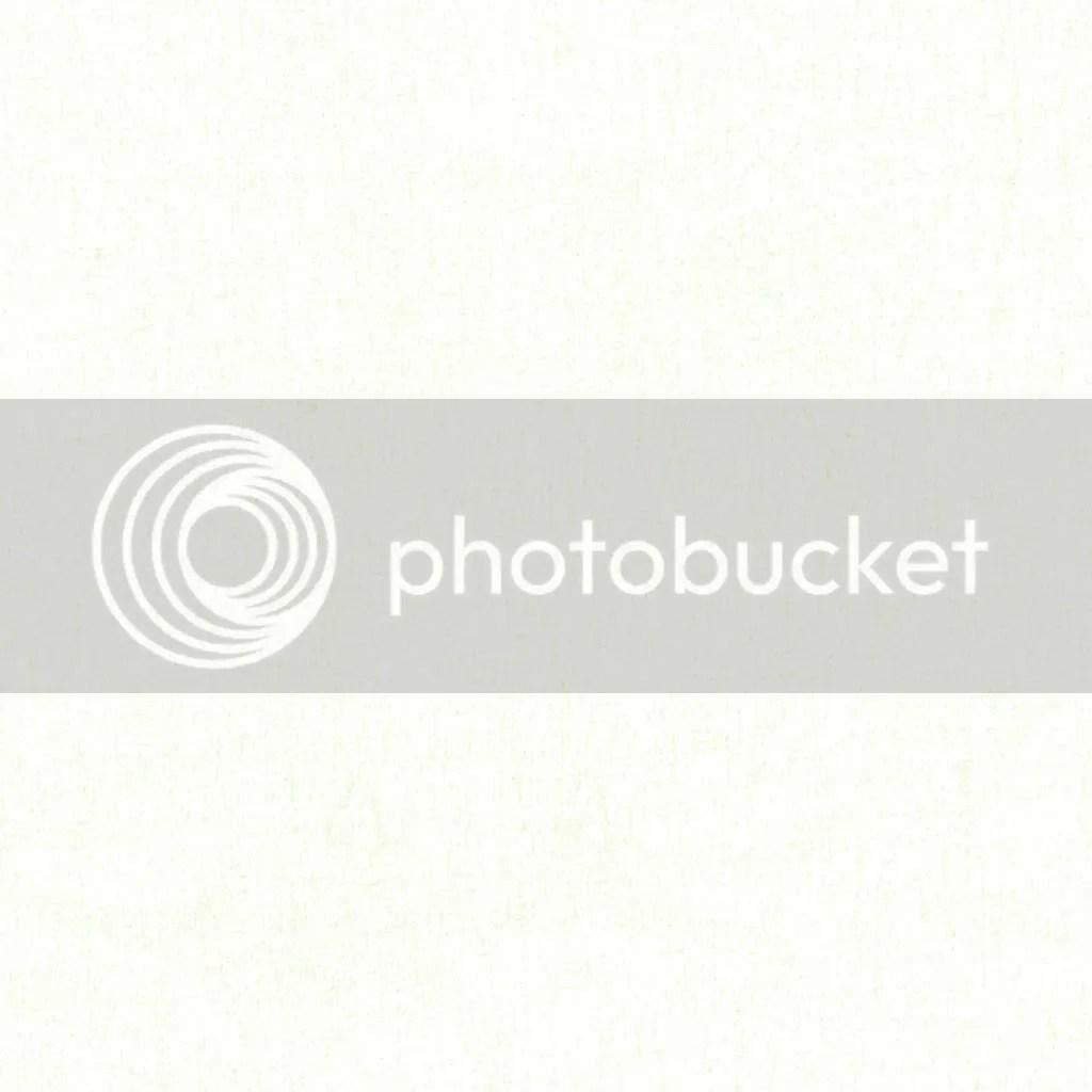 white photo: white ShabbyP_Kiwi_WhitePaper.jpg