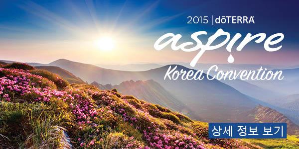 Korea_Convention2_300x600.120914.jpg