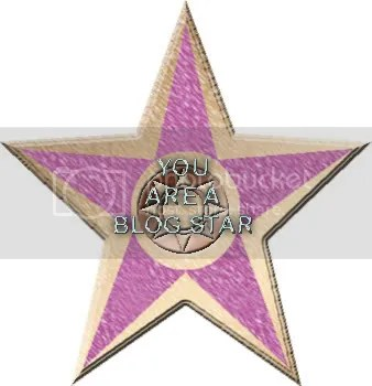 You Are a Blog Star Award