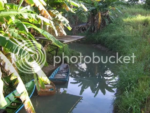 Sungai Nauran view