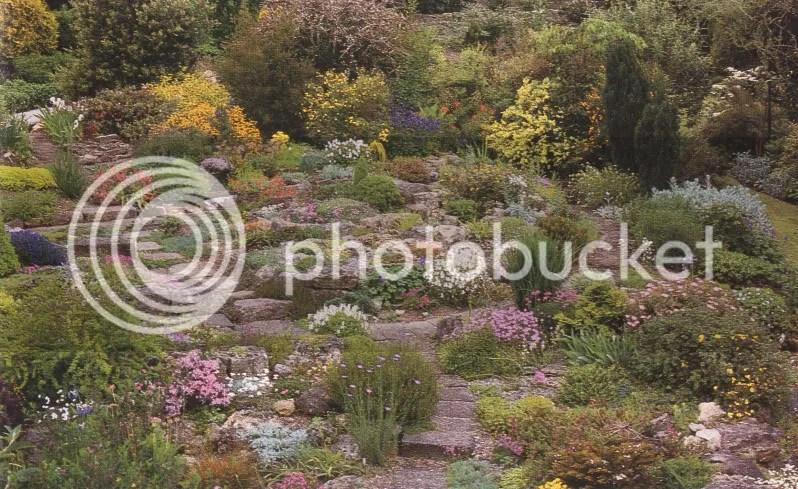 Come costruire un vero giardino roccioso giardinaggio - Immagini giardini rocciosi ...