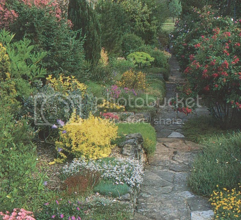 viale giardino roccioso
