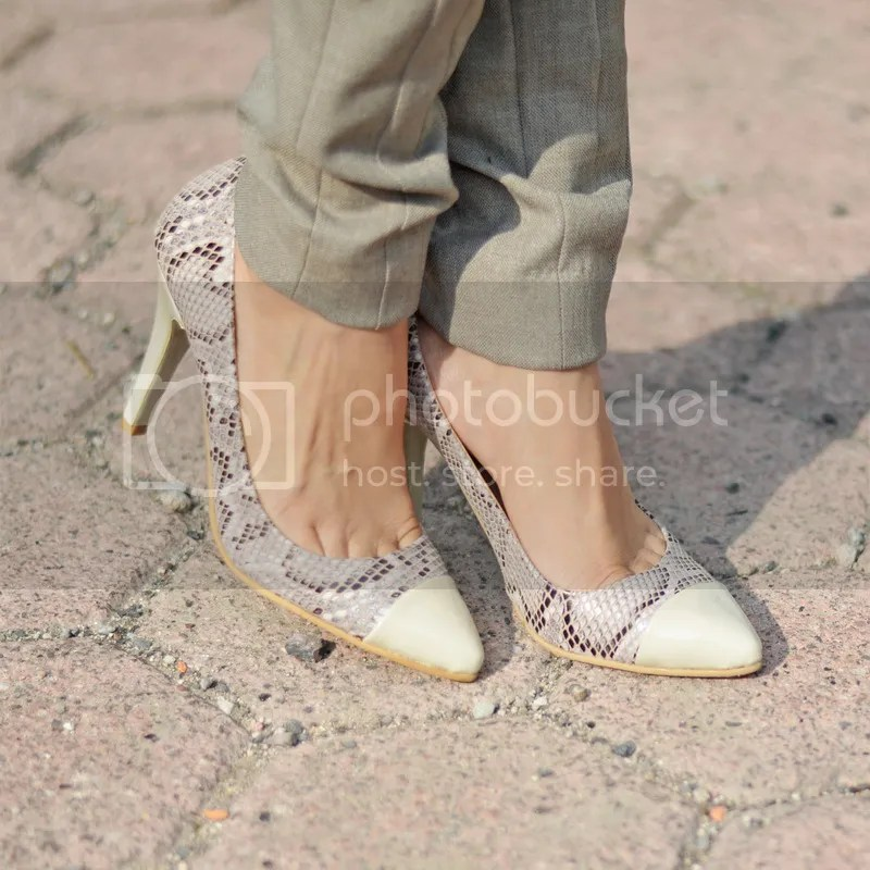 photo shoes animal print classy elegant.jpg