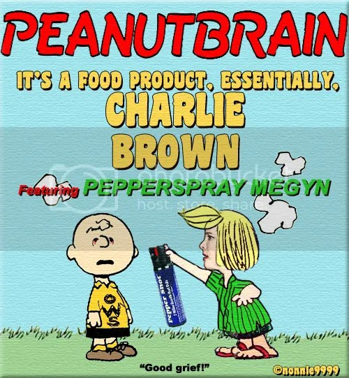peanuts pepper spray occupy wall street ows