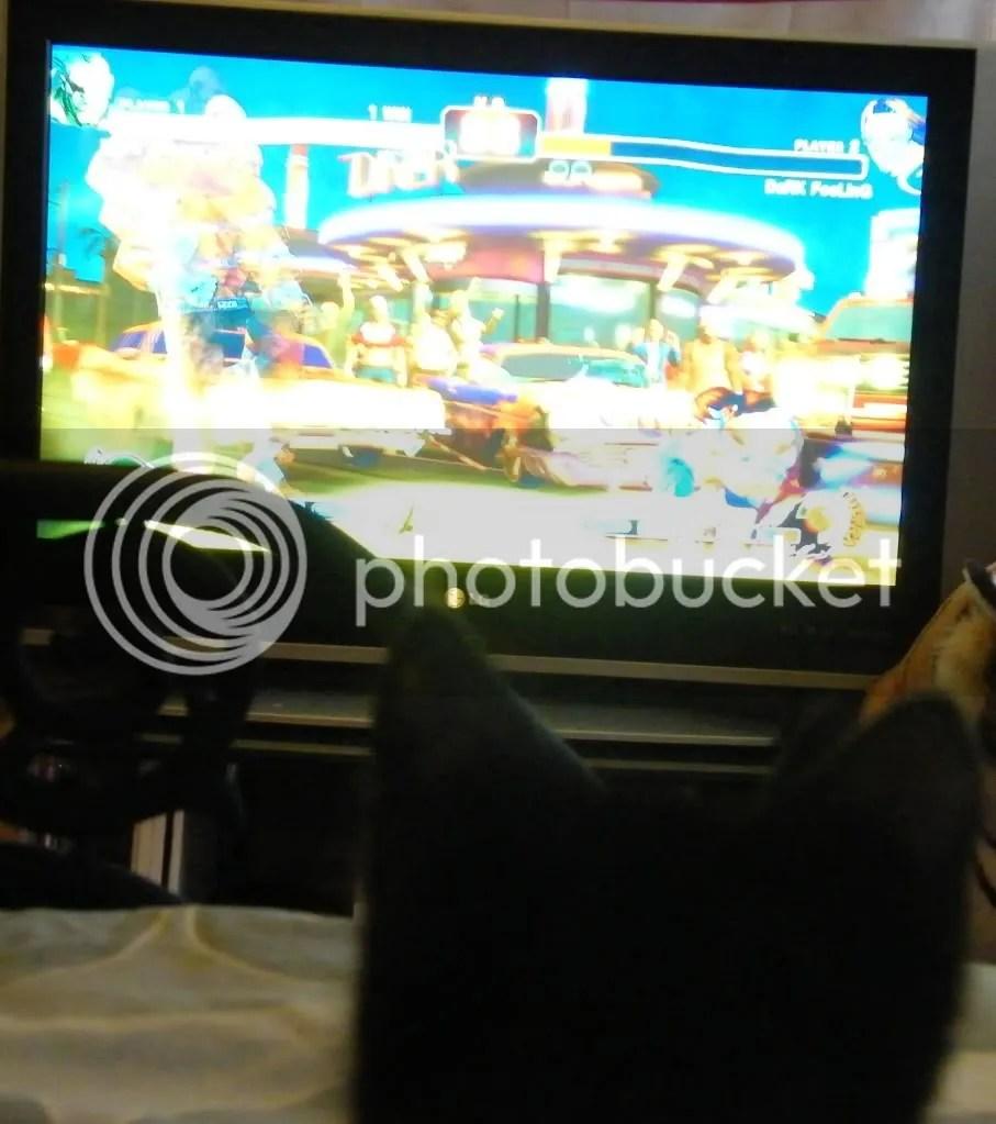 gamer kittie