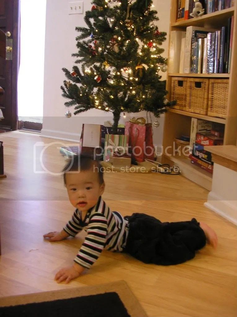 Here I am playing in front of our Christmas tree