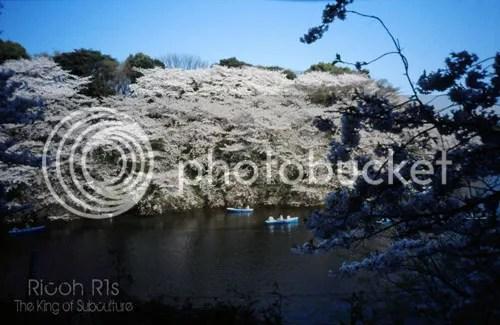 photo photokano_02_03_blog_import_529ef8a0f0be6_zps7c8875dd.jpg