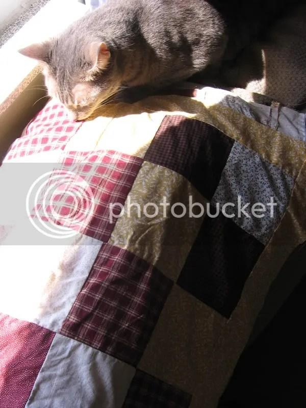 Quinn and quilt
