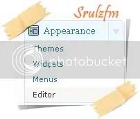 Editor, di menu Appearance