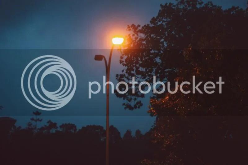 photo IMG_0062-2.jpg