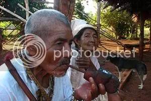 Ñande Guarani (Nós Guarani)