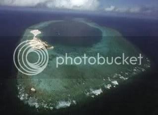 [Image: spratly_swallow-reef_pulau-layang-l.jpg]
