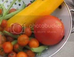 Beautiful End of Summer Vegetables