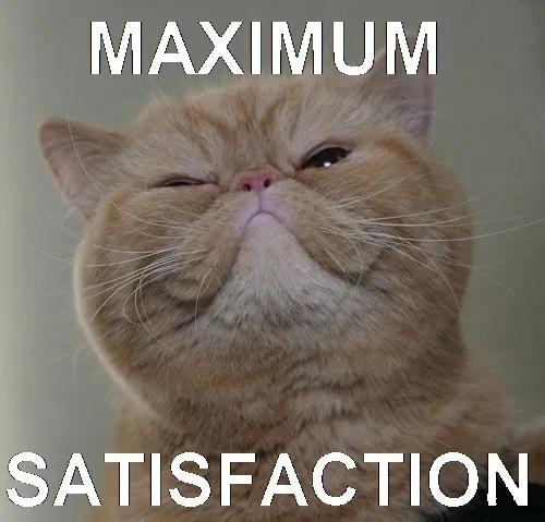 photo maximum-satisfaction-cat-.jpg