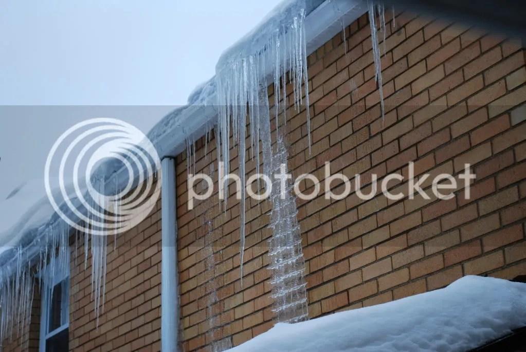 Crazy Ice Sculpture | DSC_0224.jpg