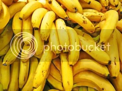 bananas,banana