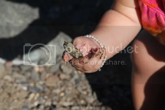 Jules loves the rocks.