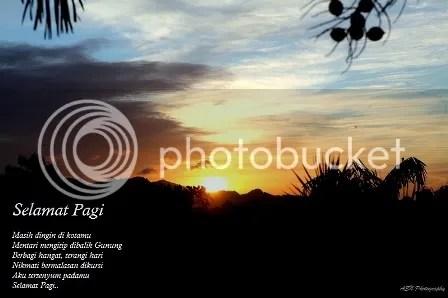 photo IMG_0712aSmall_zps7bf7f547.jpg