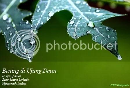 photo IMG_3592a1 Small_zpssetb6ihy.jpg