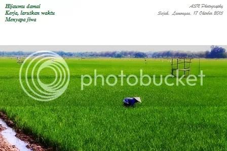 photo IMG_2398b1 Small_zpsfbbu95un.jpg