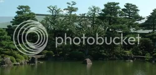 bonsai,Japan