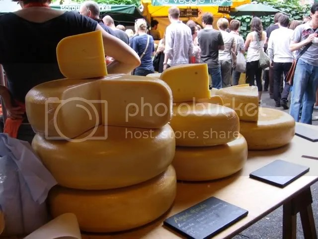 HUGE wheels of cheese (Gouda)